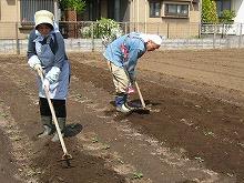 平成24年4月18日 菜園インストラクター養成講座2012 初級前期実習5回