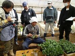 平成23年4月6日 菜園インストラクター養成講座実習4回