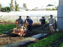 平成23年11月16日菜園インストラクター養成講座 後期実習6回