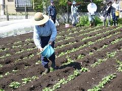 平成23年4月20日 菜園インストラクター養成講座実習5回
