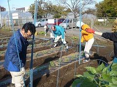 平成22年12月1日菜園インストラクター養成講座前期実習8回