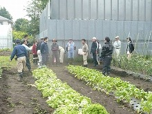 平成23年6月1日菜園インストラクター養成講座実習9回