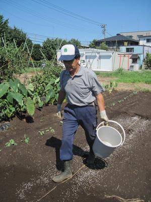 肥料をまきます