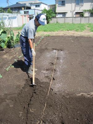 畝を作ります